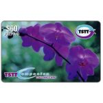 The Phonecard Shop: Purple Flowers Orchids, TT$60