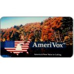 The Phonecard Shop: Amerivox - Fall In New England, Business card size, $10/$100