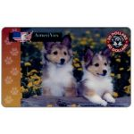 The Phonecard Shop: Amerivox - Collie pups, $20