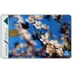 Phonecard for sale: Spring, 2 Lati