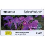 The Phonecard Shop: Orchid Cattleya skinneri, 3CORC, 1000 colones