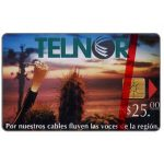 The Phonecard Shop: Mexico, Telnor, Fibre Optics & Cactus, N$25