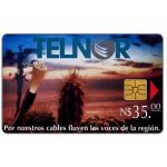 The Phonecard Shop: Mexico, Telnor, Fibre Optics & Cactus, N$35