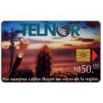 The Phonecard Shop: Mexico, Telnor, Fibre Optics & Cactus, N$50
