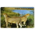 The Phonecard Shop: Cheetah, N$10