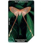 The Phonecard Shop: Sierra Leone, Butterfly, Eustera brachyura, 200 units