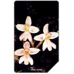 The Phonecard Shop: Sierra Leone, Orchid, 25 units