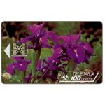 The Phonecard Shop: Andorra, Pyrenean Iris, 100 units