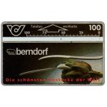 The Phonecard Shop: Berndorf, 100 units