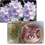 The Phonecard Shop: Bulgaria, Bulfon - Puma / Flowers, 50 units