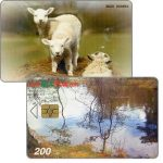 The Phonecard Shop: Bulfon - River / sheep, 200 units