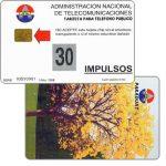 The Phonecard Shop: Paraguay, Antelco, National tree, Lapacho en flor, 30 impulsos