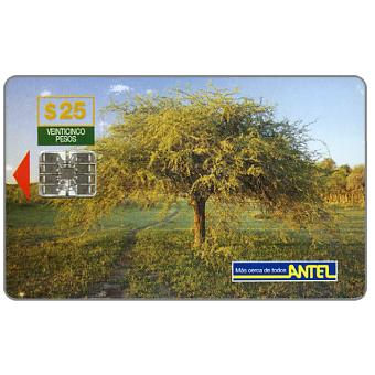 The Phonecard Shop: Antel, Tree, $25