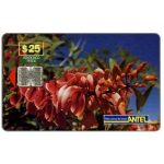 The Phonecard Shop: Uruguay, Antel, Red flowers, $25