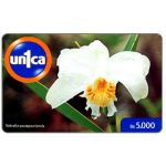 The Phonecard Shop: Un1ca - Orchid Sobralia yaurapauriensis, Bs. 5000