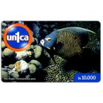 The Phonecard Shop: Un1ca - Pomacanthus paru, Bs. 10000