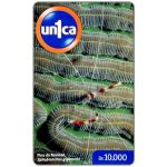 The Phonecard Shop: Un1ca - Spirobranchus giganteus, Bs. 10000