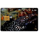 The Phonecard Shop: Morena tigre, Bs.500