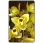 The Phonecard Shop: Orchid Acineta erythroxanthia, Bs. 1000