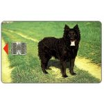 The Phonecard Shop: Croatia, Black Dog, 50 units