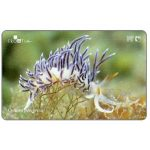 Phonecard for sale: Croatia's Undersea World, Cratena peregrina, 25 units