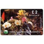Phonecard for sale: Flowers in Akamas Forest, 16CYPA, £2