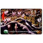 The Phonecard Shop: Cyprus, Flowers in Akamas Forest, 16CYPB, £5