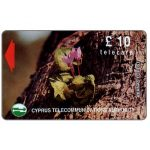 The Phonecard Shop: Cyprus, Flowers in Akamas Forest, 16CYPC, £10