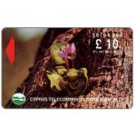 The Phonecard Shop: Cyprus, Flowers in Akamas Forest, 21CYPB, £10 (VAT included)