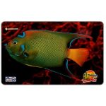 The Phonecard Shop: Malaysia, Uniphonekad - Blue fish, 14MSAB, $ 5