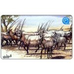 The Phonecard Shop: Qatar, Arabian Oryx, QR30