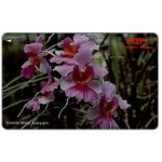 The Phonecard Shop: Singapore, Orchids, Vanda Miss Joaquim, 11SIGA, $10