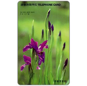The Phonecard Shop: South Korea, Iris, 2000 won