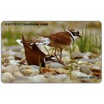 The Phonecard Shop: South Korea, Plovers, 3000 won