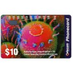 The Phonecard Shop: Australia, Colour Scanning Electron Microscopy, Butterfly Eggs, $10