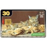 The Phonecard Shop: Puma family, 30 kr