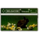 The Phonecard Shop: Belgium, Easter 1993, rabbit, 20 units
