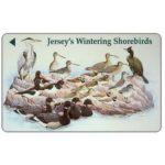 The Phonecard Shop: Jersey, Wintering Shorebirds, £2