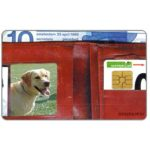 The Phonecard Shop: Netherlands, People & Pets, dog and family, FL 10