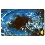 The Phonecard Shop: Turkey, Endangered species, Monk Seal, 60 units