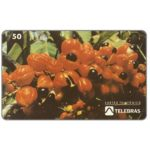 The Phonecard Shop: Brazil, Sistema Telebras - Festa do Guarana, 50 units