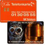 The Phonecard Shop: Germany, Von Eis bis Feuer, 12 DM