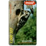 The Phonecard Shop: Slovenia, Mobitel - Lesser Spotted Woodpecker (Dendrocopos minor), 1.000 sit
