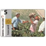 The Phonecard Shop: Andalusians, Spain, 5 CHF