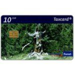 The Phonecard Shop: Switzerland, Pine forest, 10 CHF