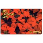 The Phonecard Shop: Italy, MCI - Poinsettia, 30 units